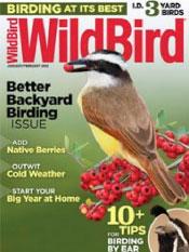 WildBird Magazine